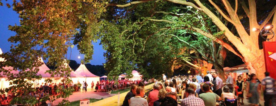 #15 BermudaShorts 15. Festival des deutschen Films Ludwigshafen am Rhein